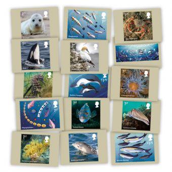Wild Coasts Postcards
