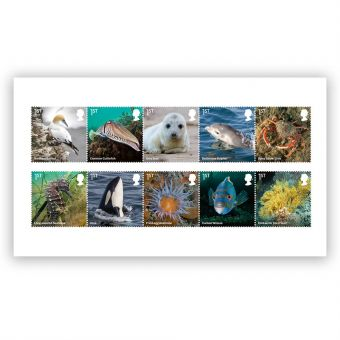 Wild Coasts Stamp Set