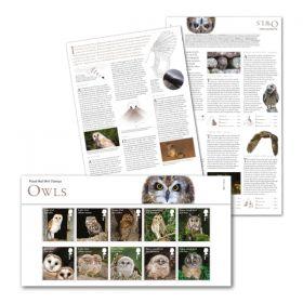Owls Presentation Pack