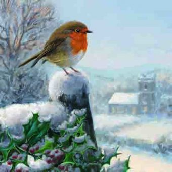 Robin and Holly Pack of 10 Charity Christmas Cards