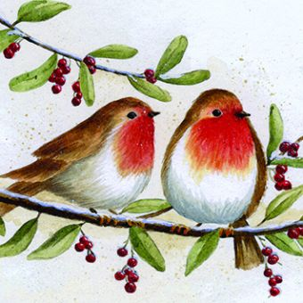 Robins Pack of 10 Charity Christmas Cards