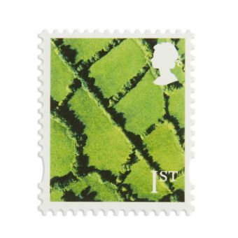Is340 1 X 1st N Ireland Stamp