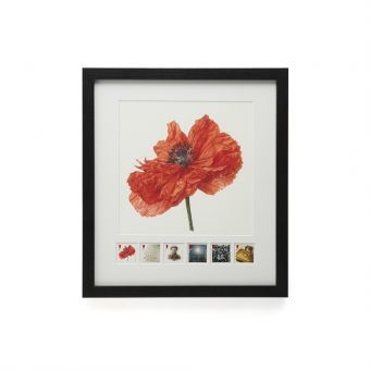 N3067 Royal Mail Framed 1914 Poppy Print And Stamp Set 1