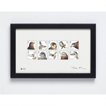 Birds of Prey Signed Framed Set of 10 Stamps