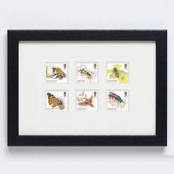 Brilliant Bugs Framed Stamps