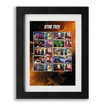 Star Trek Framed Captain's Collector Sheet