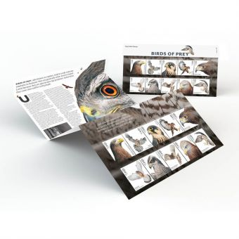 Royal Mail Birds of Prey Presentation Pack
