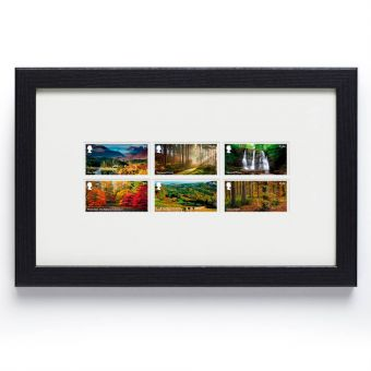 Forests Framed Set of Six Stamps