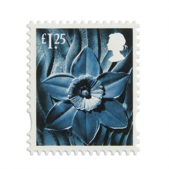 Ws028 Wales Country Definitive 1.25 Stamp