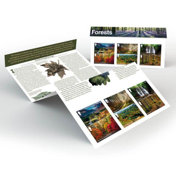 Forests Presentation Pack